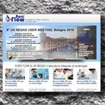 Euroflow realizzazione sitoweb